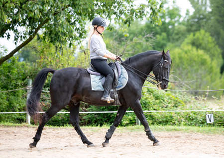 Photo for riding girl are training her black horse - Royalty Free Image