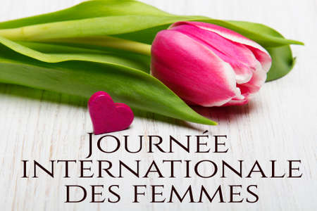 Women's day card with French words 'Journee internationale des femmes'. Tulip flower and small wooden heart on white background