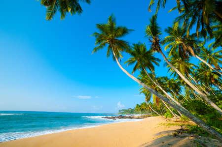 Foto de Untouched tropical beach in Sri Lanka - Imagen libre de derechos