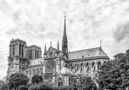 Notre Dame Cathedral Paris.