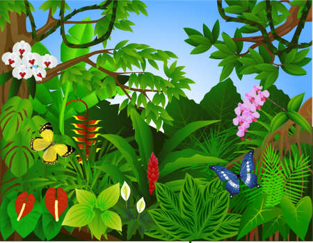 Beautiful tropical forest  illustrationのイラスト素材