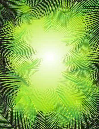 Ilustración de Palm leaf background - Imagen libre de derechos