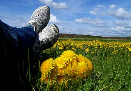 Foto de A shot of relaxed feet kicked back with a bouquet of freshly picked dandelions and more flowers in the distance. - Imagen libre de derechos