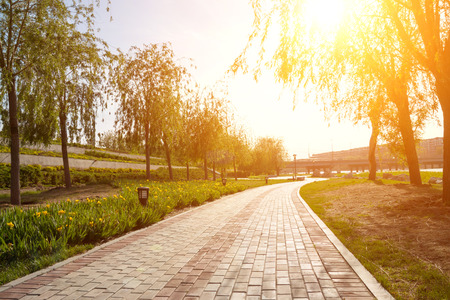 Photo for Park sidewalk - Royalty Free Image