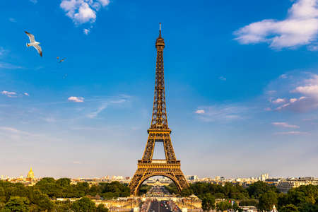 Photo pour Eiffel tower in summer with flying birds, Paris, France. Scenic panorama of the Eiffel tower under the blue sky. View of the Eiffel Tower in Paris, France in a beautiful summer day. Paris, France. - image libre de droit