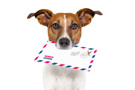 dog with glasses delivering air mail envelope with stamp