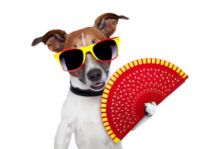 spanish dog with a red hand fan