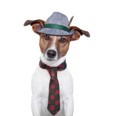 Foto de bavarian dog with traditional tie and hat - Imagen libre de derechos