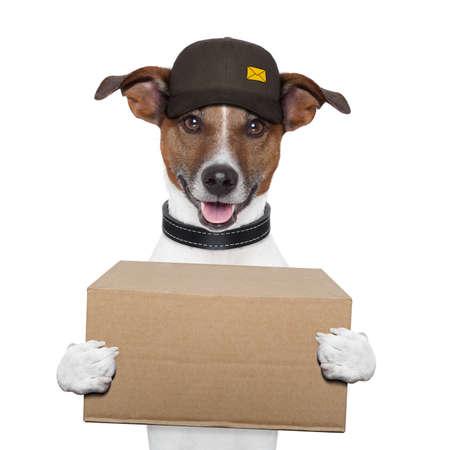 Photo pour dog delivery post box - image libre de droit