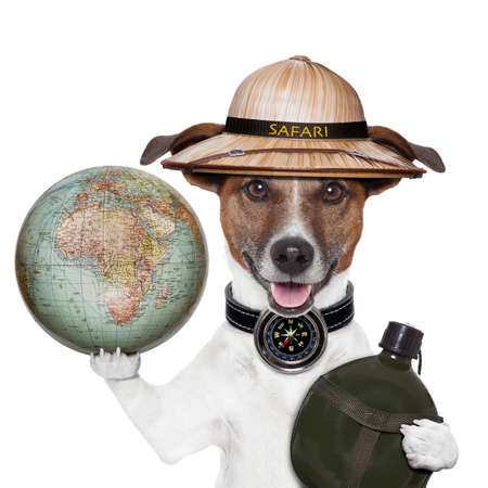 travel globe compass dog safari