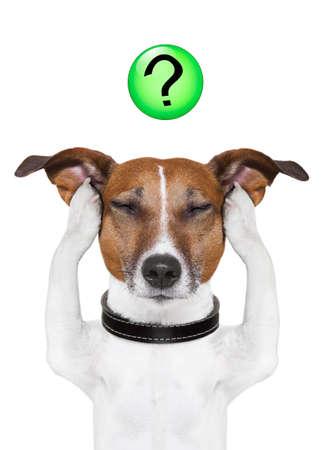 Photo pour dog thinking with a question mark on top - image libre de droit