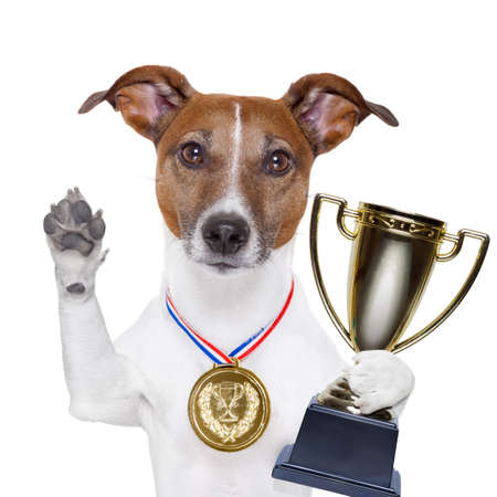 Photo pour champion winning dog with a gold medal - image libre de droit