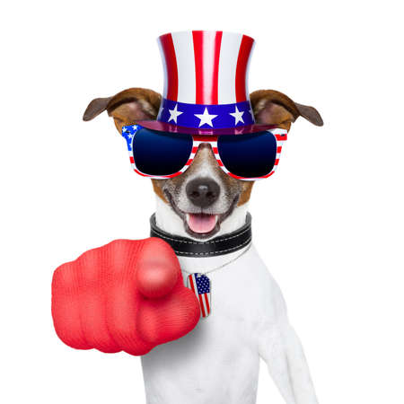 Foto de american dog pointing with  big finger at you - Imagen libre de derechos