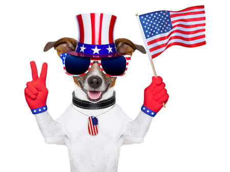 american dog with peace  fingers waving american flag