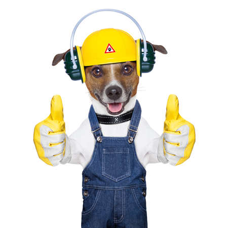 funny under construction dog with two thumbs  up
