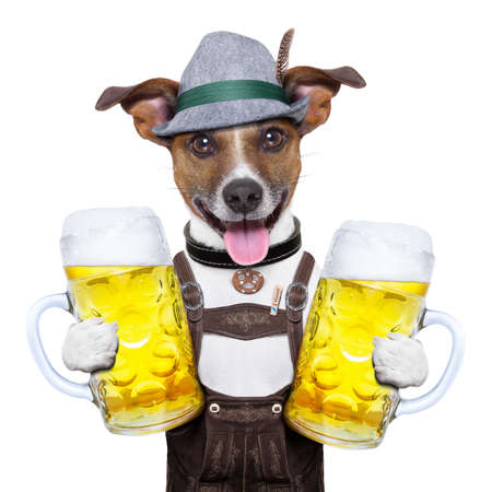 oktoberfest dog with two  beer mugs ,smiling happy