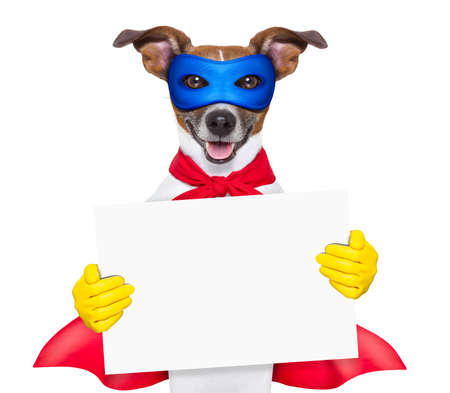 super hero dog with  red cape and a  blue mask holging a placard