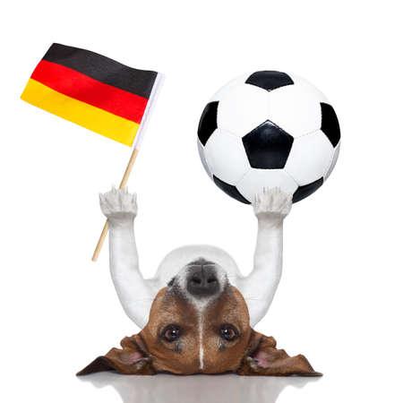 soccer dog balancing a soccer ball and a german flag