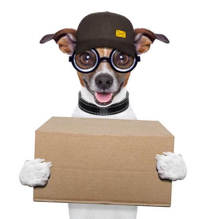 postal dog delivering a big brown package
