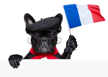 french bulldog holding a flag of france