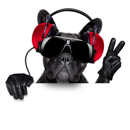 Photo pour cool dj dog listening to music behind a white and blank banner or placard with peace  or victory fingers - image libre de droit