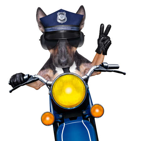 POlICE DOG ON DUTY driving a motorbike with victory peace fingers