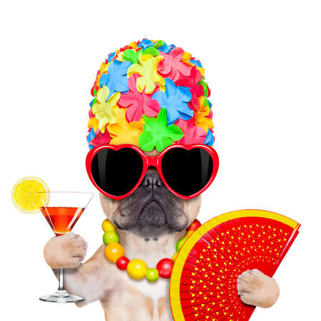 fawn french bulldog dog ready for summer vacation or holidays, wearing sunglasses and having a  cocktail,  isolated on white background