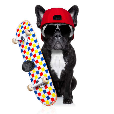 french bulldog dog, as a skater with red cap and skateboard, isolated on white background