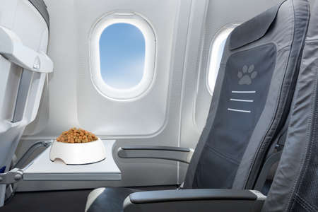 Photo for pet bowl full of food inside an airplane  window seat  where pets are welcome on board - Royalty Free Image