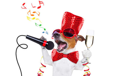 Photo for jack russell dog celebrating new years eve with champagne glass and singing out loud, isolated on white background - Royalty Free Image