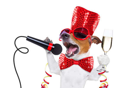 jack russell dog celebrating new years eve with champagne  glass and singing out loud, with a  microphone , isolated on white background