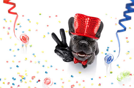 Photo pour french bulldog dog celebrating new years eve with owner ,isolated on serpentine streamers and confetti , with victory, peace fingers - image libre de droit
