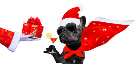 Photo pour French bulldog with santa hat isolated on white - image libre de droit