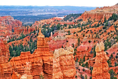 bryce red rocks