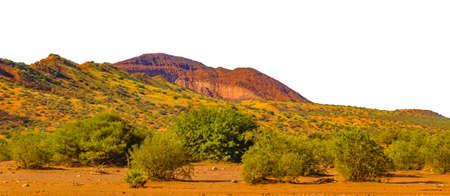 Foto de Panoramic landscape with no sky isolated photo - Imagen libre de derechos
