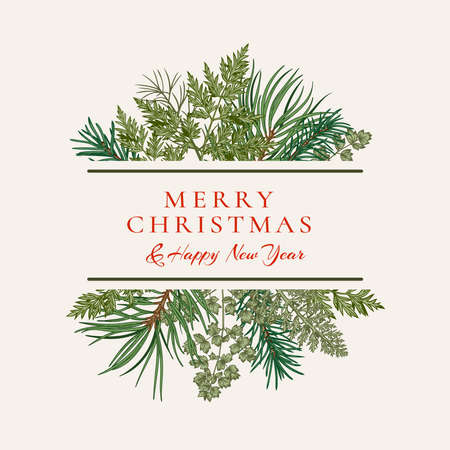 Illustration pour Ð¡hristmas card with bouquet with fir and pine branches, fern and leaves. Botanical illustration. Vector holiday card. Greenery. - image libre de droit