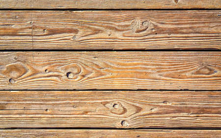 Photo for Beautiful natural wood background with copy space. - Royalty Free Image