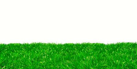 Photo pour Studio shot of green lawn against white background - image libre de droit