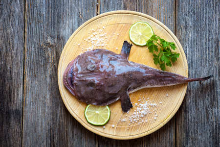 Photo pour Angler fish - image libre de droit