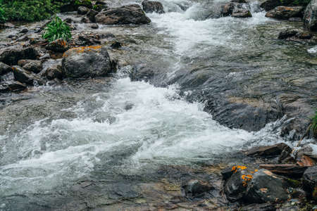 Foto de Beautiful landscape with stones in water riffle of mountain river. Powerful water stream among boulders in mountain creek with rapids. Fast flow among rocks in highland brook. Small river close-up. - Imagen libre de derechos