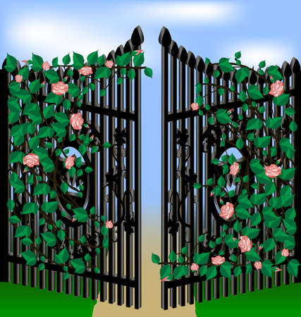 old gates, overgrown with pink roses, green leaves