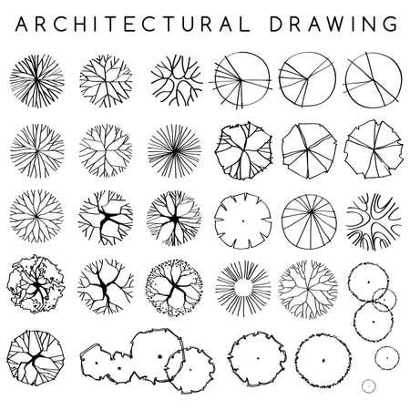 Illustration pour Set of Architectural Hand Drawn Trees : Vector Illustration - image libre de droit