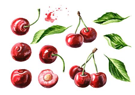Photo pour Fresh ripe cherry with leaves elements set. - image libre de droit