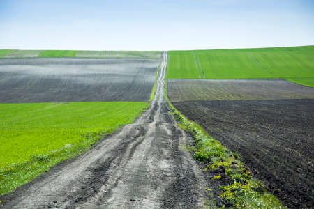 very long dirt road and fields