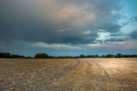Photo for Colorful rainy clouds after sunset over a stubble field. Nowiny, Poland - Royalty Free Image