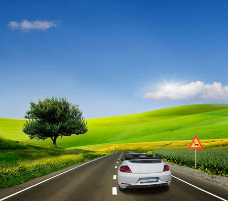 Photo for White car, convertible on a paved road between fields - Royalty Free Image