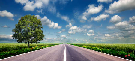 Photo for green field and road over blue sky - Royalty Free Image