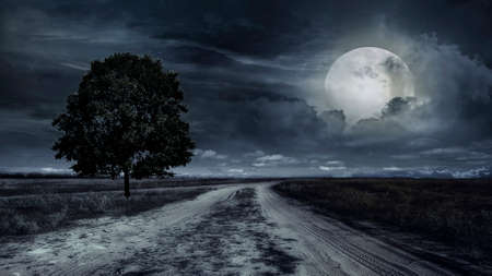 Photo pour paved road through a field of wheat at night. Storm - image libre de droit