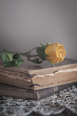 Photo pour Vintage Still life with dry yellow rose on the retro lace fabric and old book - image libre de droit