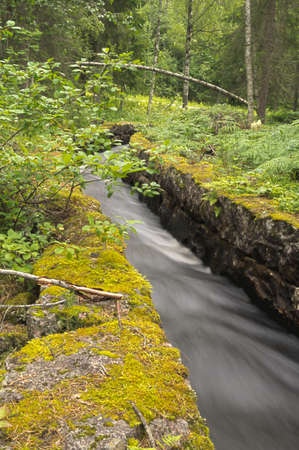 A stream goes through a canal in the forrest of Sweden